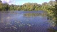 The Elms Lake Rickmansworth