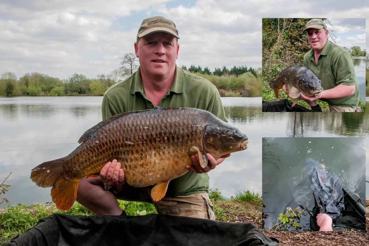 common carp 29 lb 2 oz