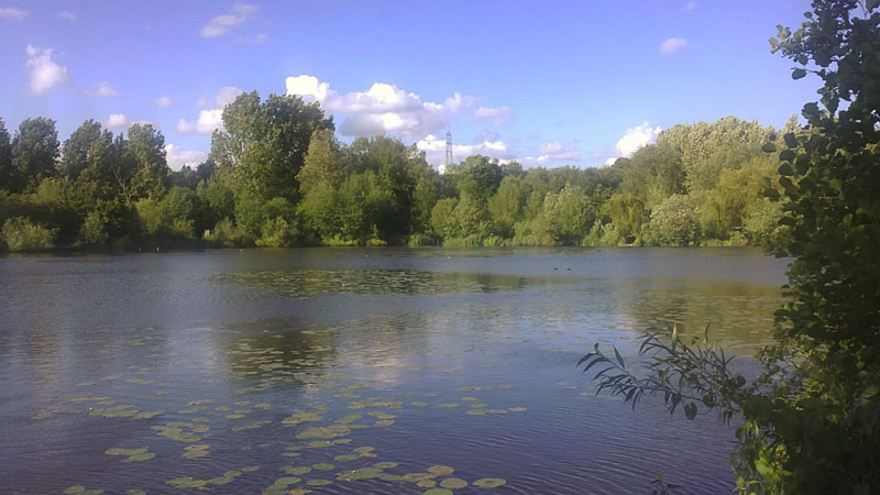 The Elms Lake Rickmansworth