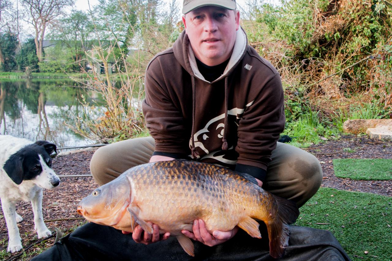 common carp 25 lb -a