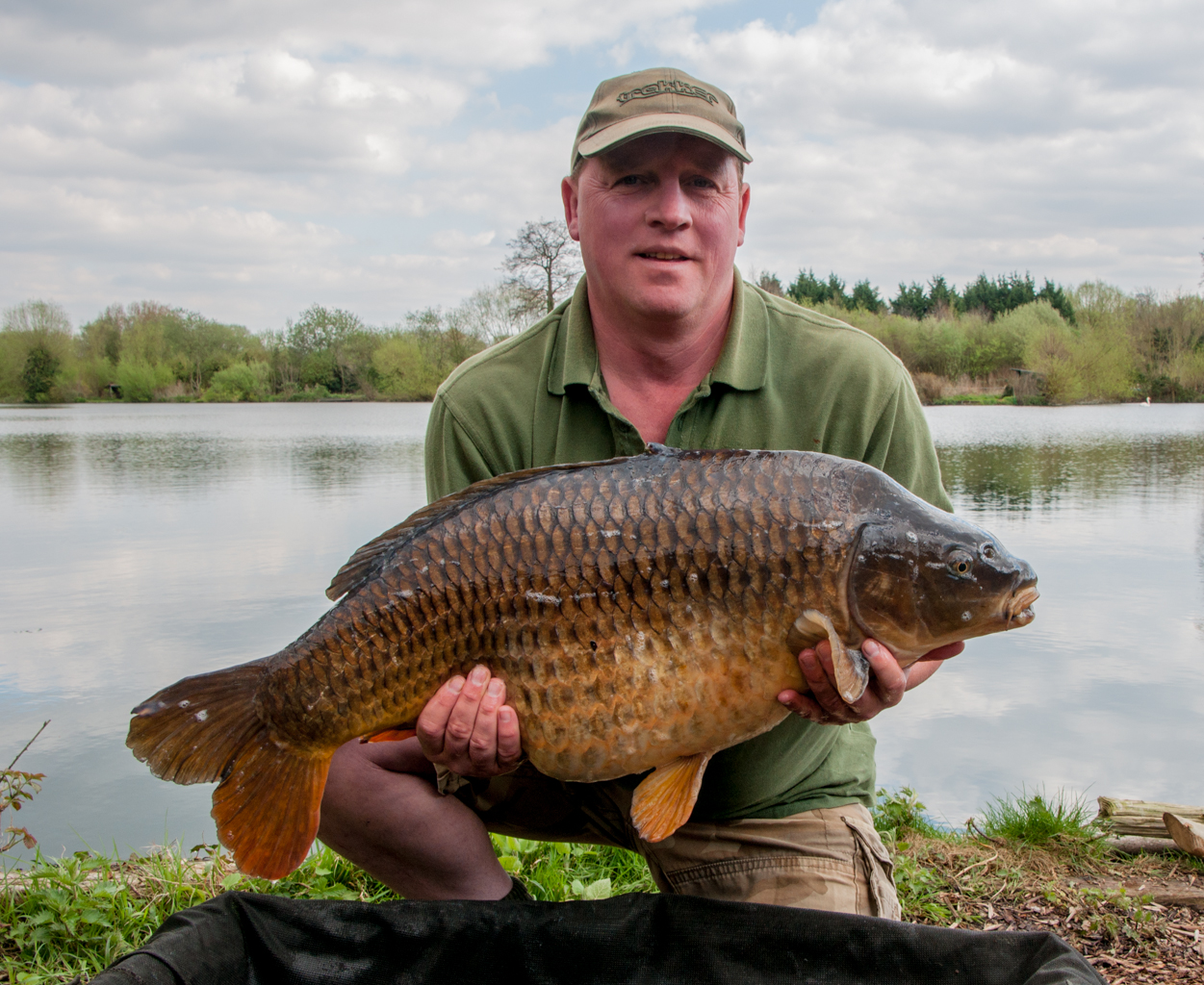 common carp 29 lb 2 oz -a